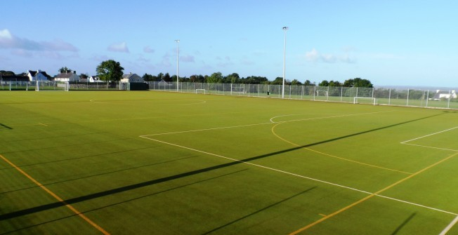 Synthetic Pitch Maintenance in Caerphilly