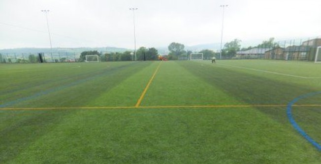 Pitch Maintenance Specialists in Badwell Green